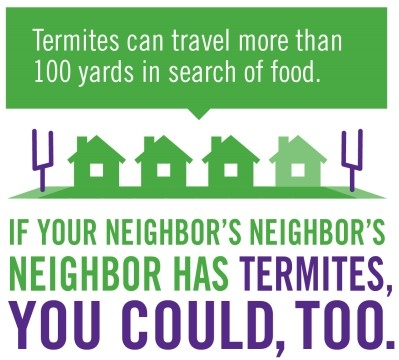 termite-infographic-reduced.jpg